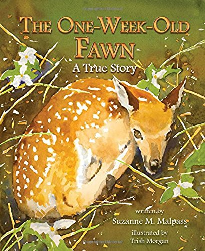 The One-Week-Old Fawn: Malpass, Suzanne M./