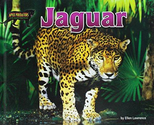 Jaguar (Apex Predators of the Amazon Rain Forest): Ellen Lawrence