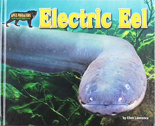 Electric Eel (Apex Predators of the Amazon Rain Forest): Ellen Lawrence