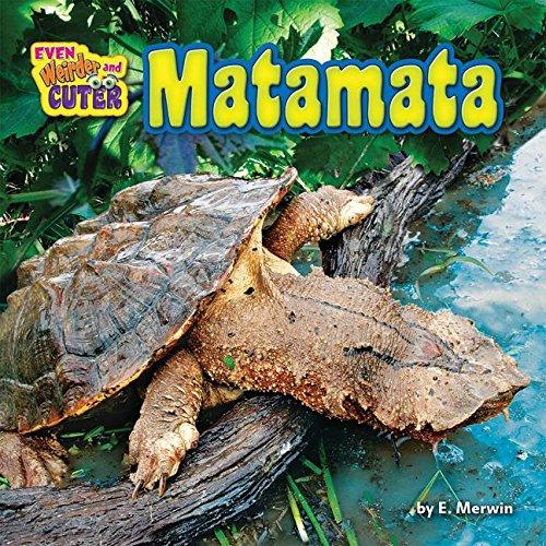 Matamata (Hardback): E Merwin