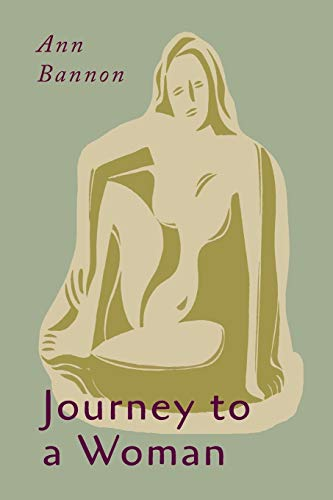 9781684220373: Journey to a Woman