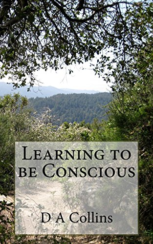 9781717538550: Learning to be Conscious