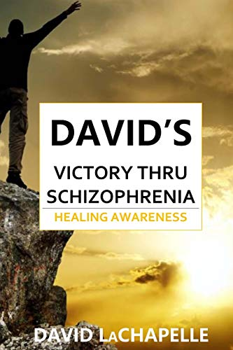 9781718652576: David's Victory Thru Schizophrenia: Healing Awareness