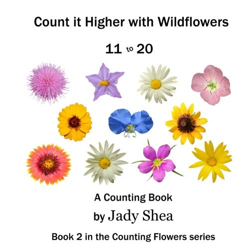 Count it Higher with Wildflowers 11 to: Shea, Jady
