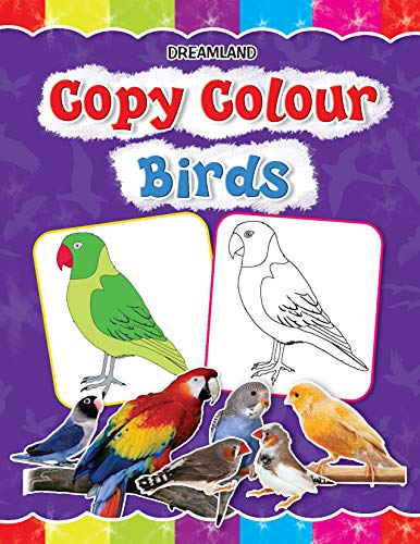 9781730174506: Copy Colour - Birds