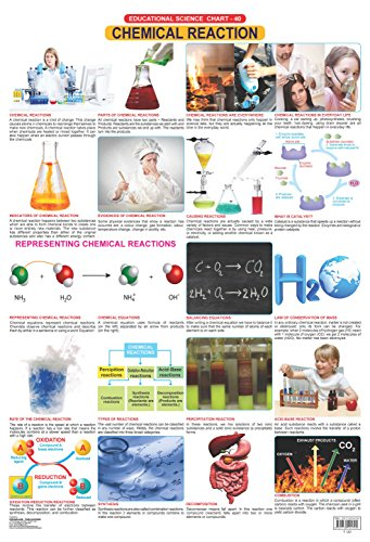 9781730194795: Chemical Reactions