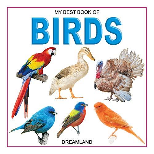 9781730198786: Birds