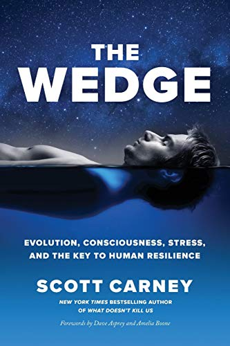 9781734194302: The Wedge: Evolution, Consciousness, Stress, and the Key to Human Resilience.