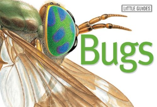9781740893466: Bugs (Little Guides)