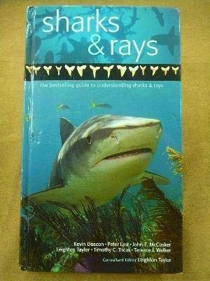 9781740896665: A Guide to Sharks & Rays