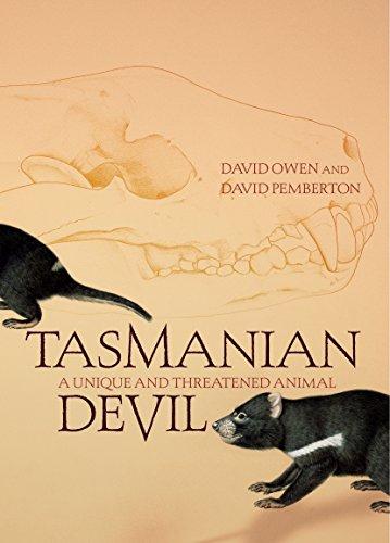 9781741143683: Tasmanian Devil: A Unique and Threatened Animal