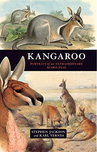 9781741759037: Kangaroo: Portrait of an Extraordinary Marsupial