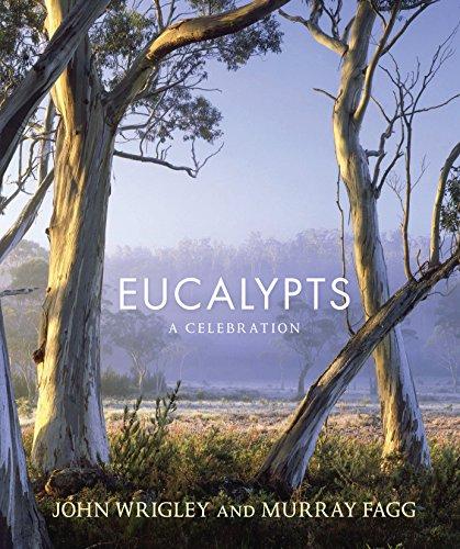 9781741759242: Eucalypts: A Celebration