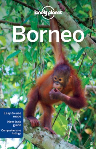 9781741792157: Lonely Planet Borneo (Regional Travel Guide)