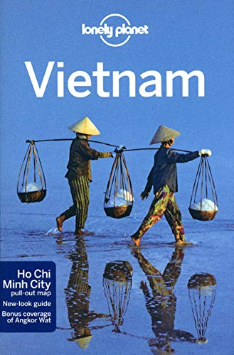 9781741797152: Vietnam 11 (inglés) (Country Regional Guides) [Idioma Inglés]
