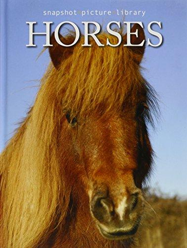 9781741828276: Snapshots: Horses