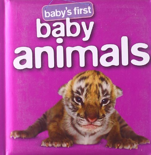 9781741855302: Baby's First Baby Animals