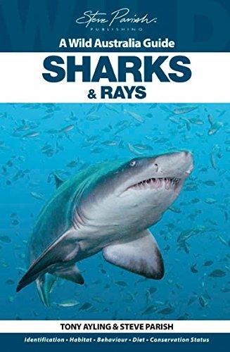 9781741933277: Sharks and Rays