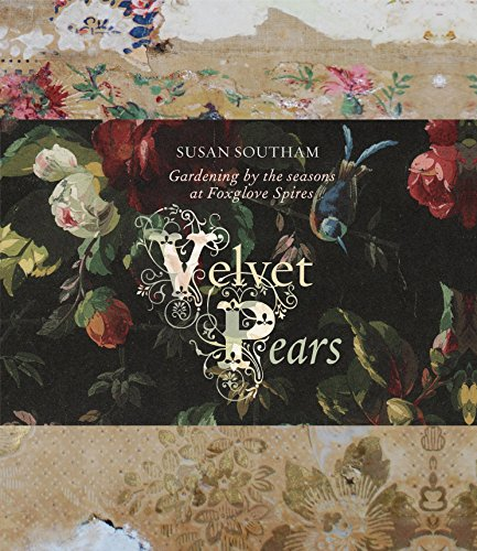 9781741963656: Velvet Pears