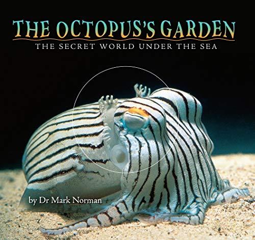 9781742030210: The Octopus's Garden: The Secret World Under the Sea