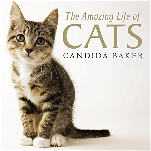 9781742376615: The Amazing Life of Cats