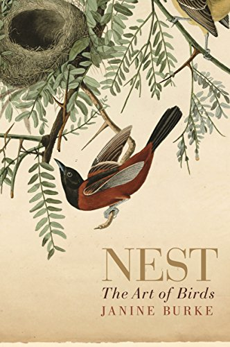 9781742378299: Nest: The Art of Birds