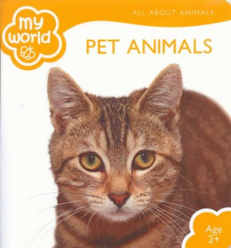 9781742489483: My World Pet Animals