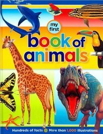 9781742520803: My First Book of Animals