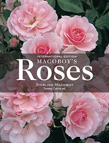 Macoboy's Roses: Stirling Macoboy