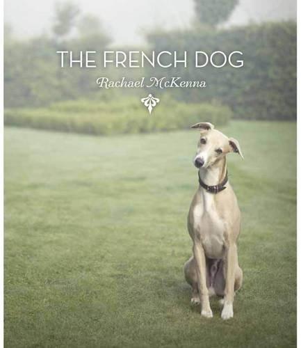 The French Dog: Rachael McKenna