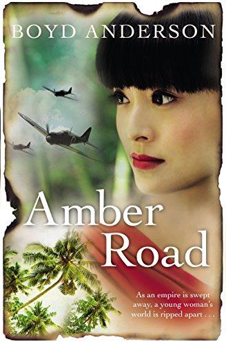 9781742759395: Amber Road