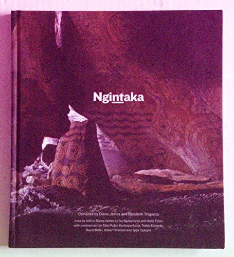 9781743052921: Ngintaka
