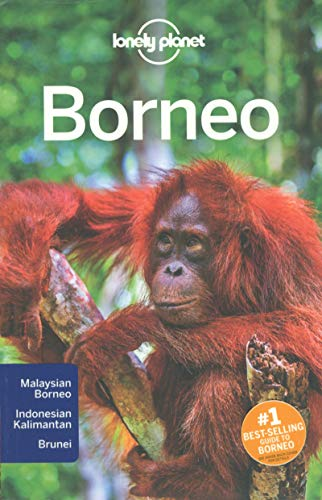 9781743213940: Lonely Planet Borneo (Travel Guide)