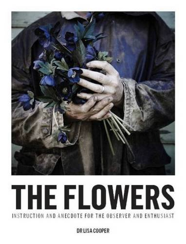 9781743363386: The Flowers