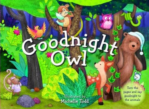 9781743462461: Goodnight Owl