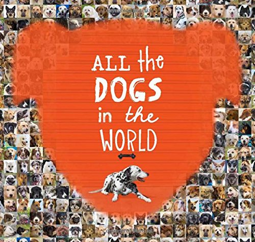 9781743790496: All the Dogs in the World