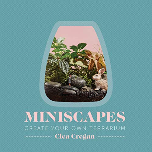 9781743791400: Miniscapes