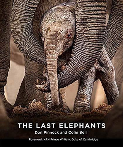 9781743795514: The Last Elephants