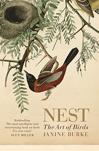 9781760110895: Nest: The Art of Birds