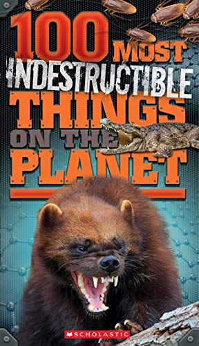 100 Most Indestructible Things on the Planet (Paperback): Anna Claybourne
