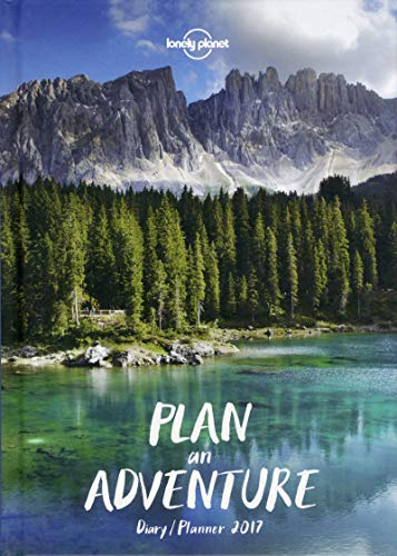 9781760340827: Lonely Planet Diary Planner 2017 (Diaries 2017)