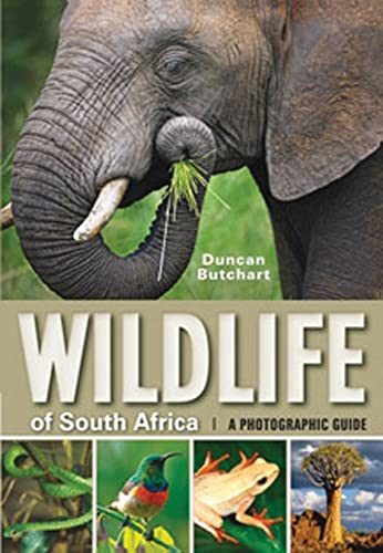 9781770076327: Wildlife of South Africa: A Photographic Guide
