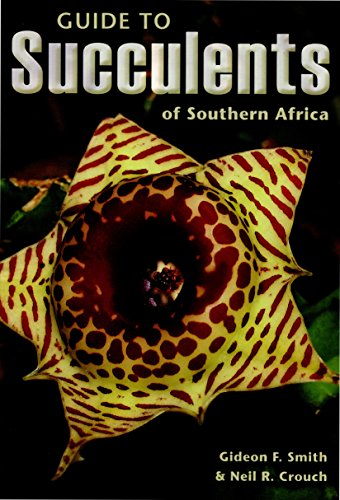 9781770076624: Guide to Succulents of Southern Africa