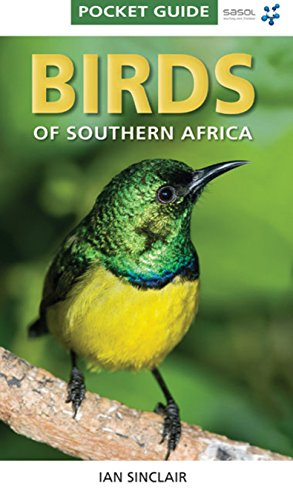 9781770077690: Pocket Guide: Birds of Southern Africa