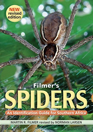 9781770078017: Filmer's Spiders: An Identification Guide for Southern Africa
