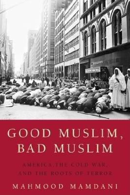 9781770091566: Good Muslim, Bad Muslim