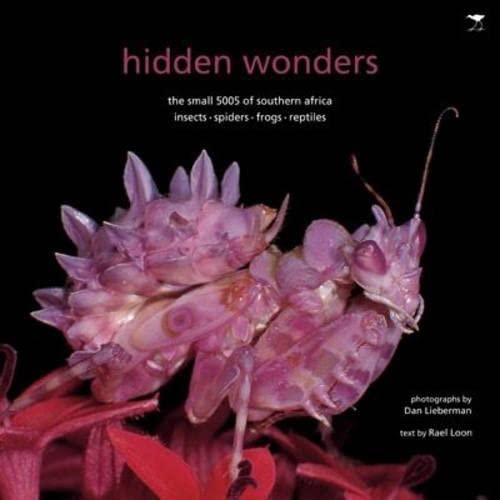 Hidden Wonders: The Small 5005 of Southern: Rael Loon, Dan