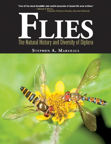 9781770851009: Flies: The Natural History and Diversity of Diptera