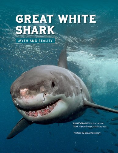 Great White Shark: Myth and Reality (Hardback)