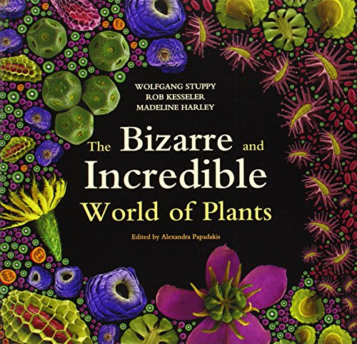 9781770851252: The Bizarre and Incredible World of Plants